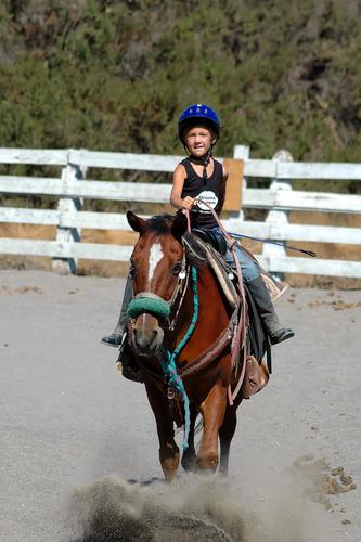 Las Vegas Horse Property